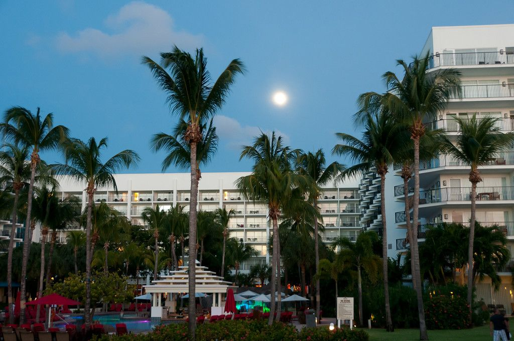 Aruba Marriott Resort in the island of Aruba