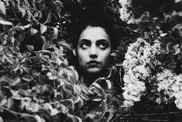 Thistles and thorns.  model: Yassmine  photo: Sarah Rose Smiley