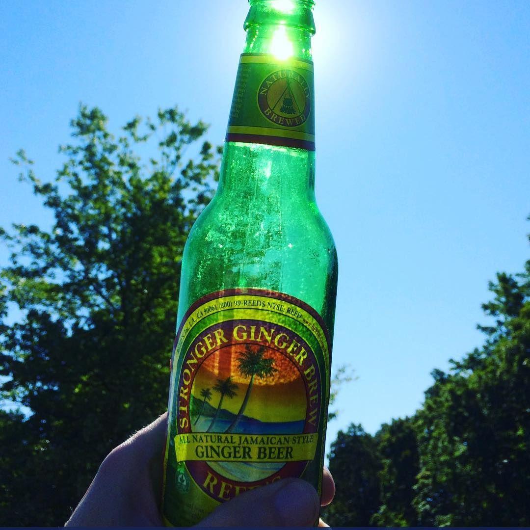 Good Morning Reedsstrongergingerbrew Reedsinc Beer Bottle Bottle Brewing
