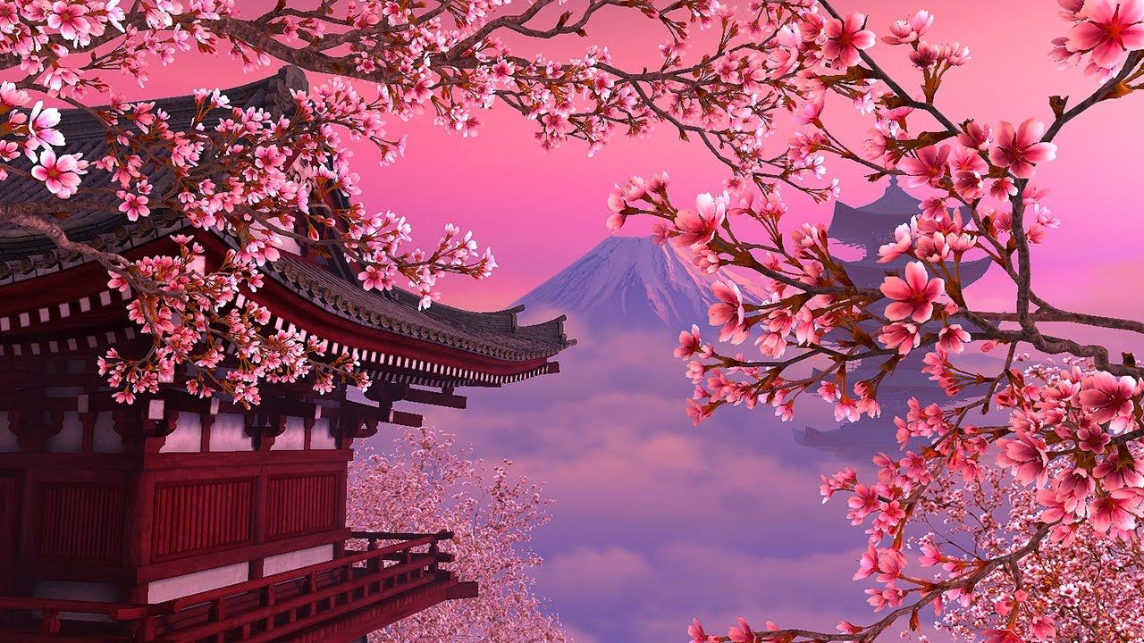 Blooming Sakura 3d Screensaver Live 1280720 In 2020 Anime Scenery Wallpaper Cherry Blossom Wallpaper Anime Computer Wallpaper