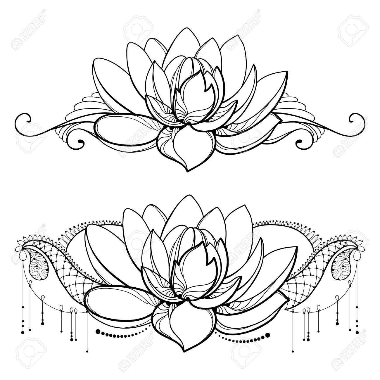 Stock Vector Lotus outline, Lotus flower, Flowers