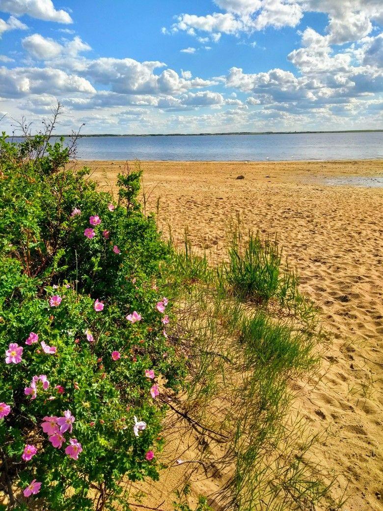 Lake Diefenbaker Mistusinne Taken By Michelle L Stevens Lake