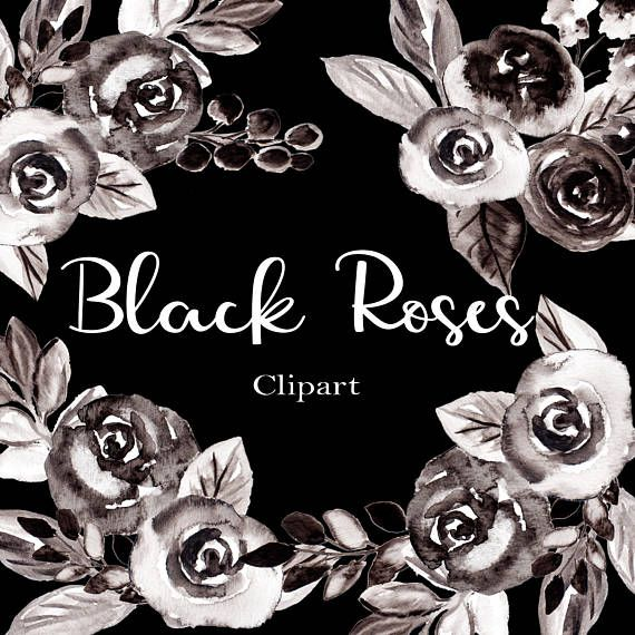 Watercolor Flower Clipart Black And White Roses Clip Art