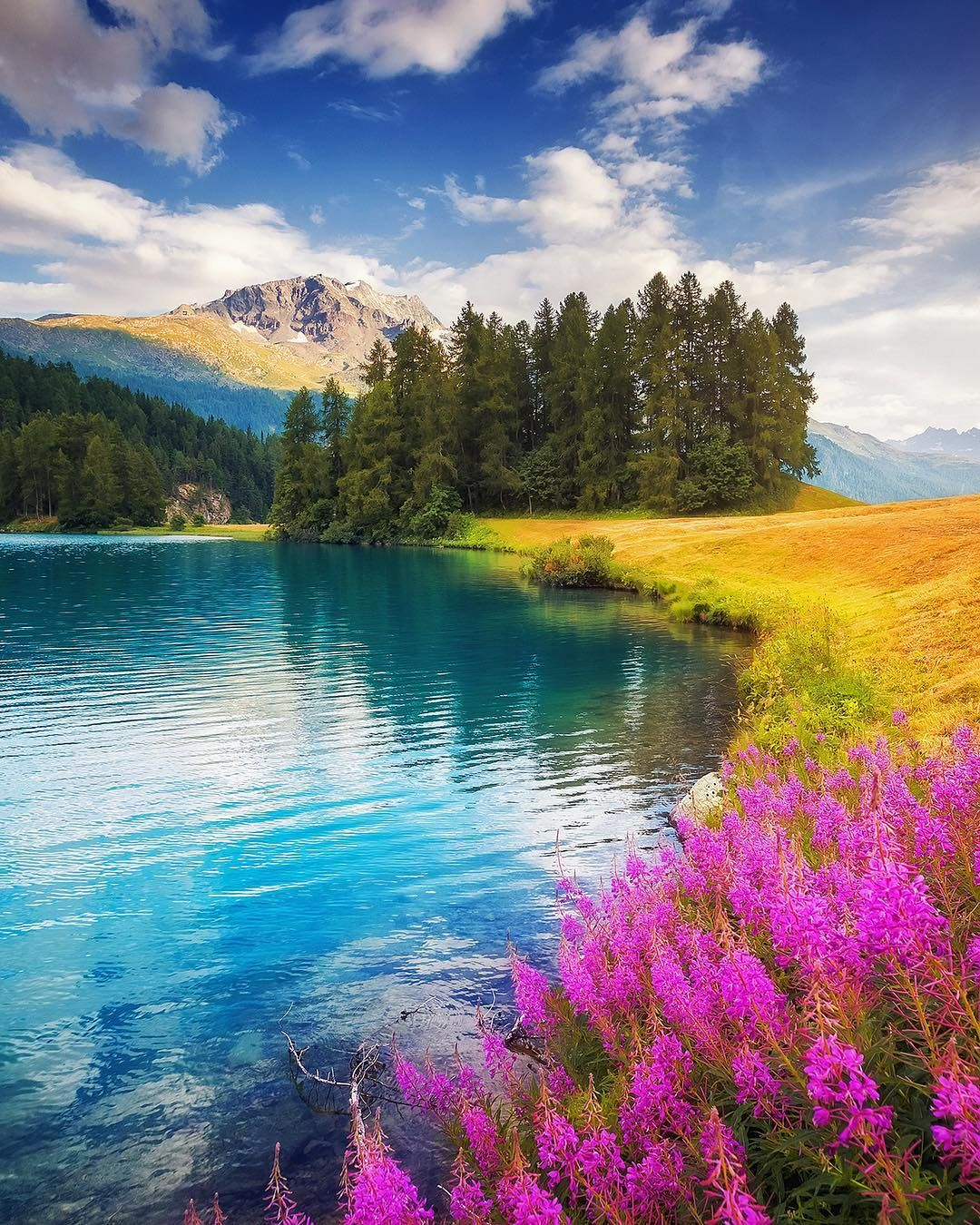 Silvaplana Switzerland C Creative Travel Projects Beautiful Landscapes Beautiful Nature Nature Photography