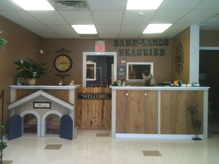 small grooming salon space - Google Search | Gold Paw Grooming ...