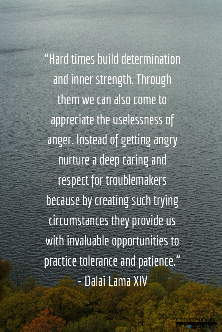 Adyashanti Quotes Anger Sad's Bodyguard My Journey  Pinterest  Dalai Lama