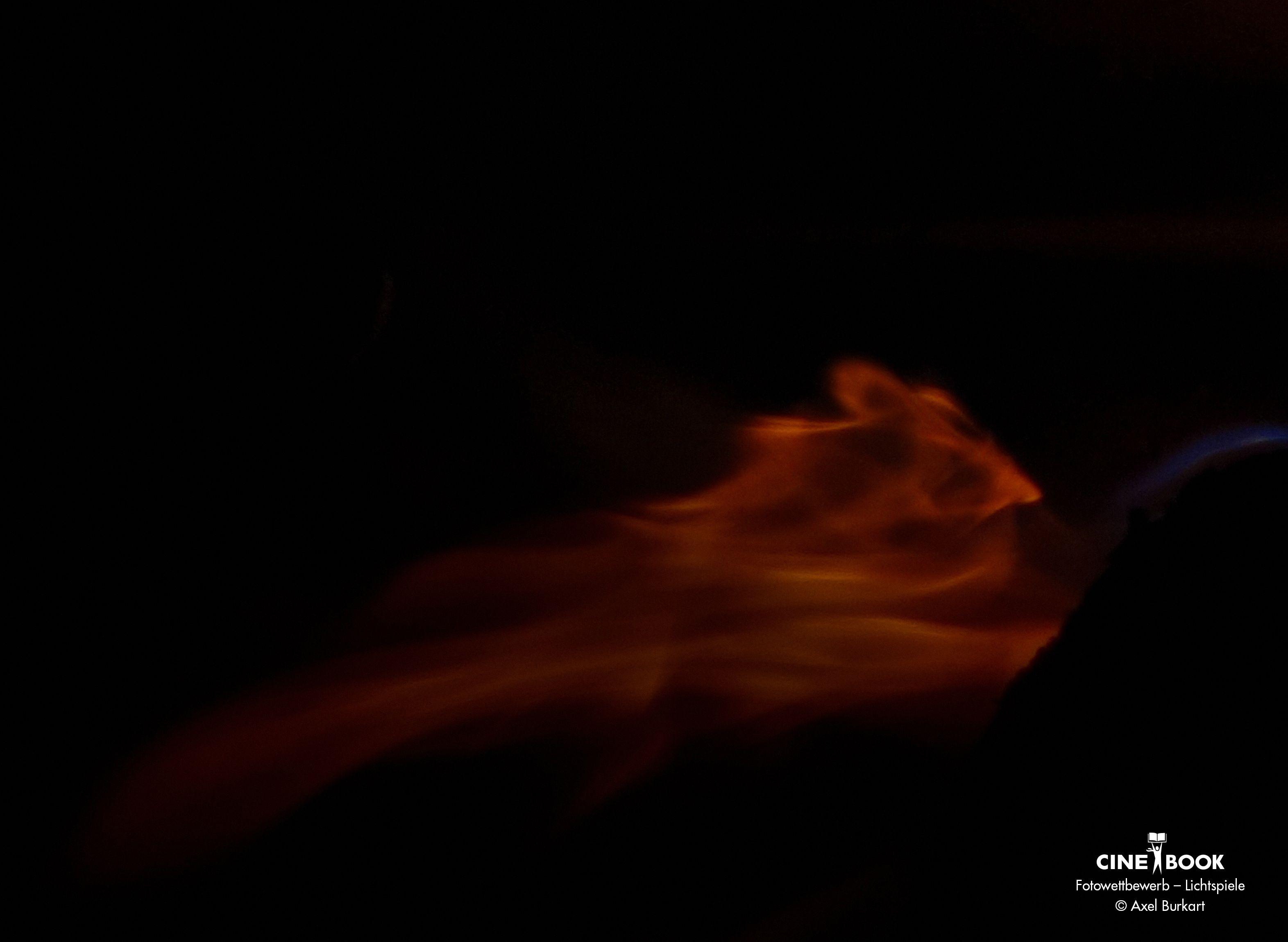 """""""Flucht vor dem Feuer""""; aus der Serie """"Schemen""""  © Axel Burkart"""