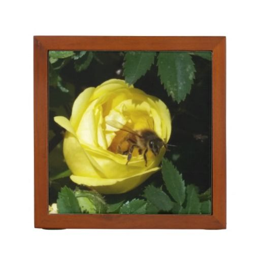 Honey Bee Pollinating Yellow Roses Desk Organizers