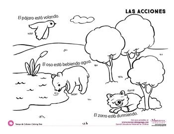 Action Verbs Coloring Pages {Spanish} Action verbs, Easy