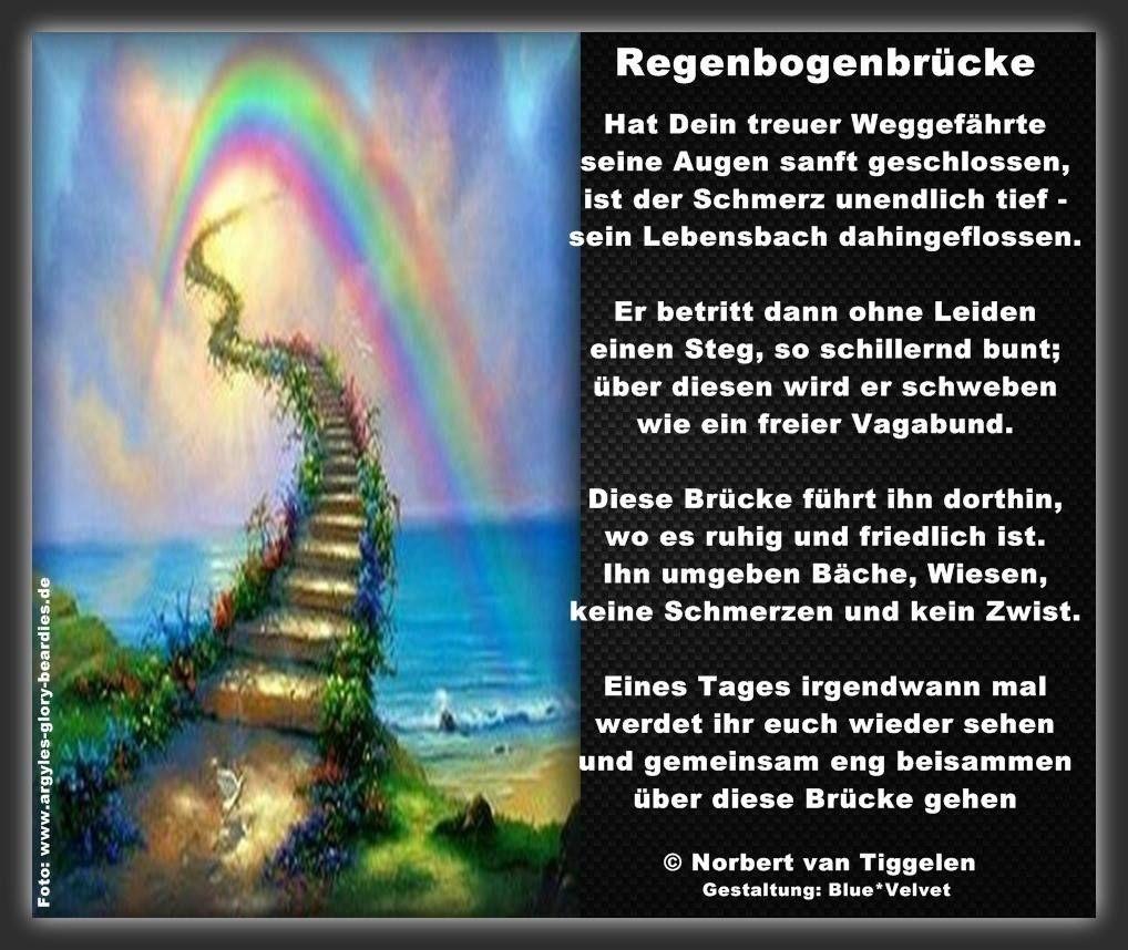 Regenbogenbrücke Hund Gedicht Google Suche Sprüche Trauer Oma Zitate Tröstende Worte