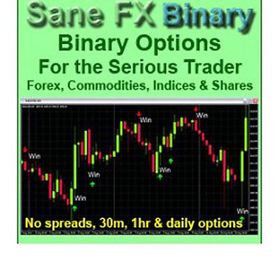 Forex trading torrents training return on investment examples of letters