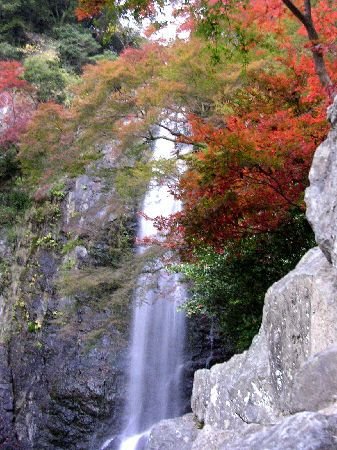 Autumn Scenery by ucchi, via Flickr