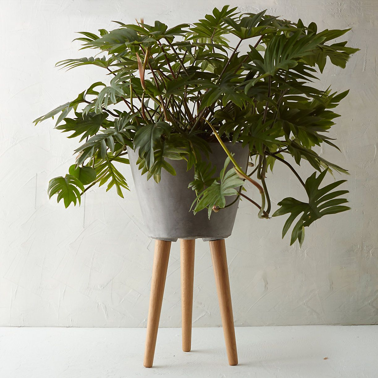 Tapered Wooden Leg Pot Plant Decor Indoor Planters Plant Stand Indoor