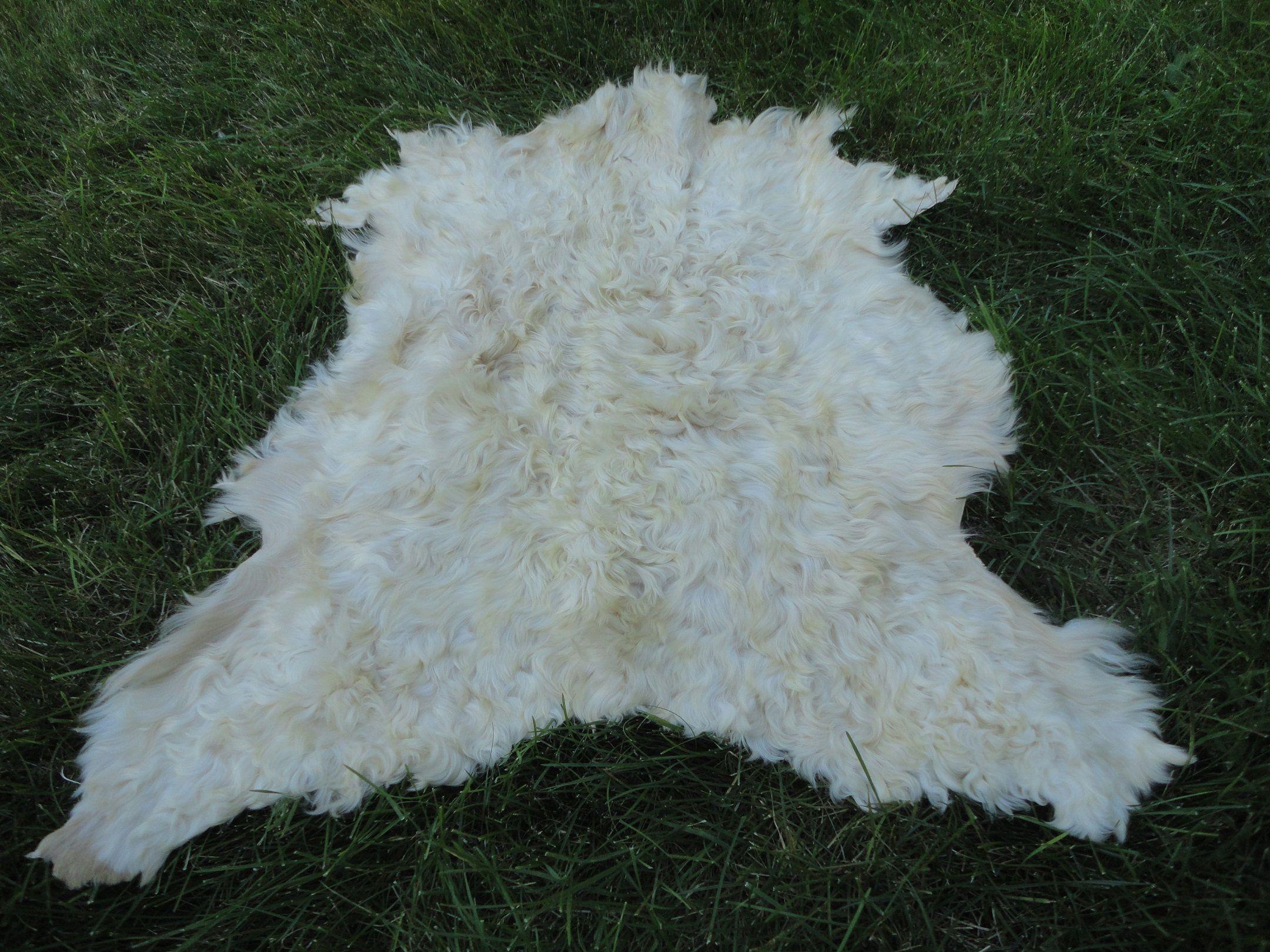 best gift goatskin pelt fur natural leather carpet turkish perfectly tanned skin 3 3 x 2 6 ft bedridden decorativ hayvan derisi hali evcil hayvanlar hali