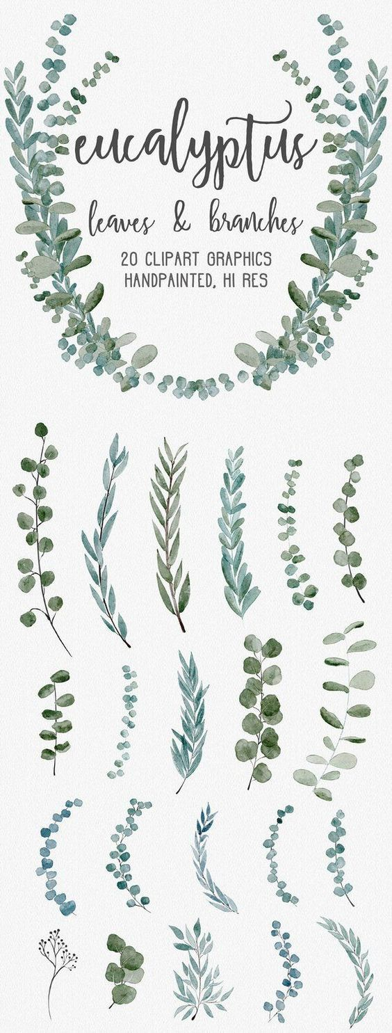 Photo of WATERCOLOR EUCALYPTUS GRAPHICS, commercial use, muted watercolor florals, eucalyptus clipart, wreaths, modern botanicals greenery leaves