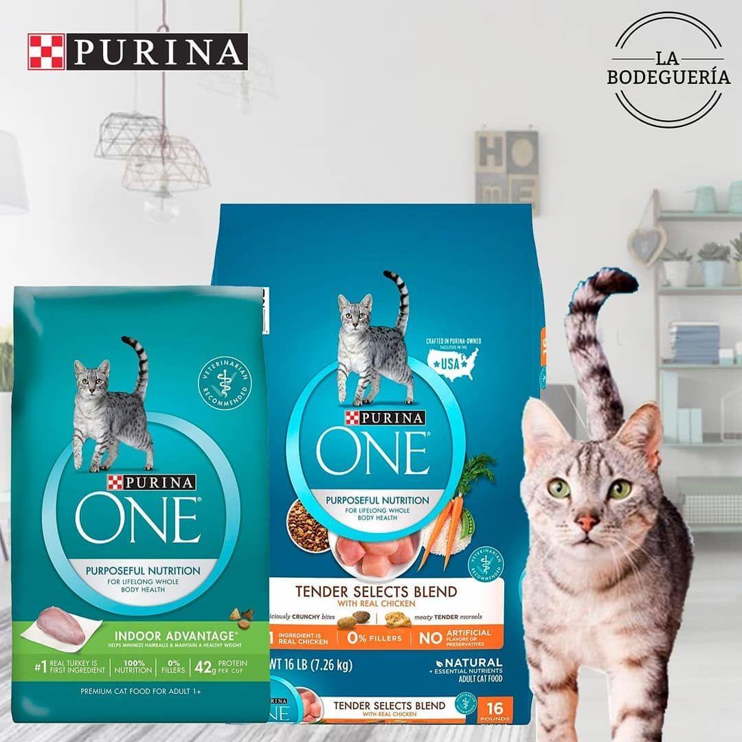 Purina One 3 18kg Precio 15 Purina One 7 26kg Precio 30 Delivery Gratis En Caracas Labidegueriave Gatarina Catfood Gatos Pu Cat Food Purina Cats