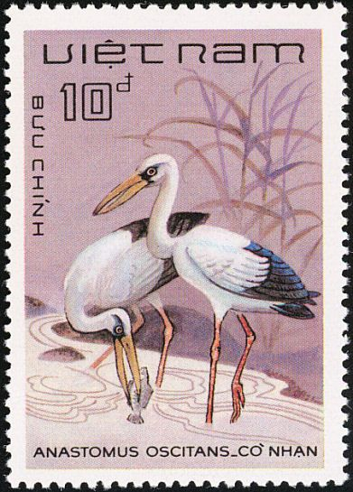 Asian Openbill stamps - mainly images - gallery format