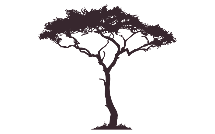 african tree decal google search tattoo pinterest african tree african and tattoos. Black Bedroom Furniture Sets. Home Design Ideas