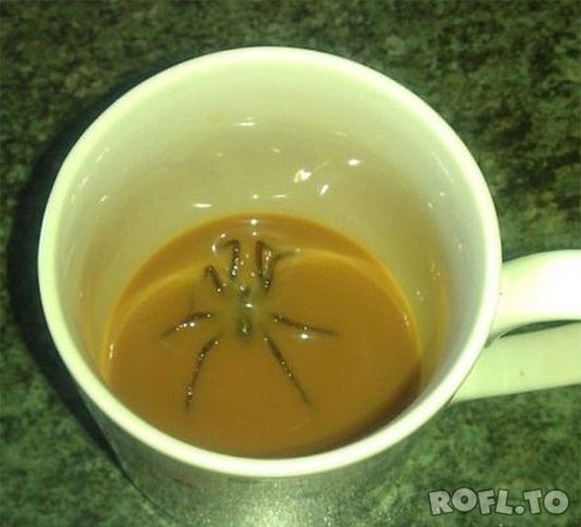 Monday Morning Fail. I'd die if this were me...