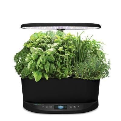 Aerogarden Bounty Black In Home Garden With Gourmet Herb 640 x 480