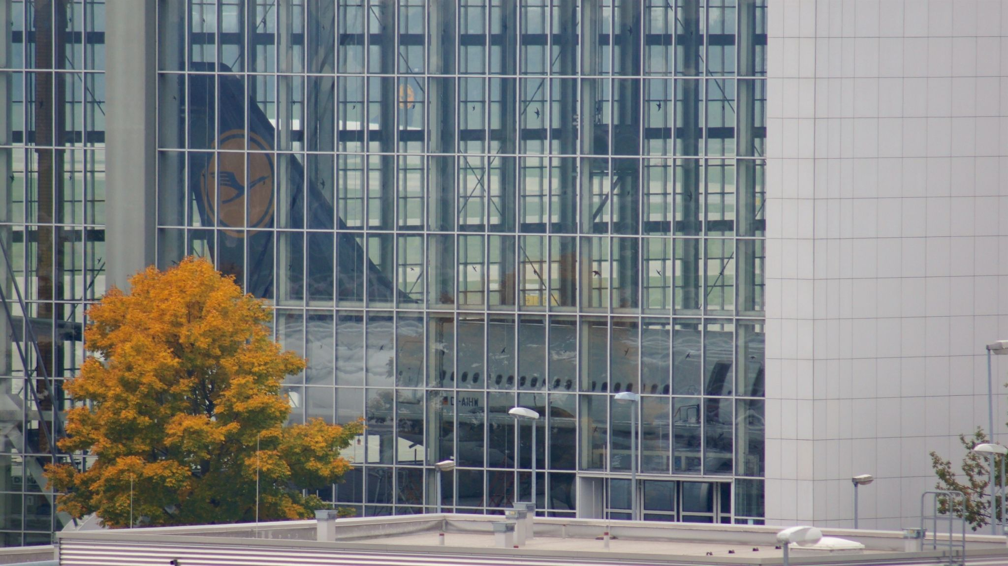 Planespotting am Flughafen München (MUC) Flughafen