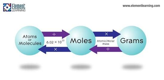 Convert Between Grams Moles And Atoms And