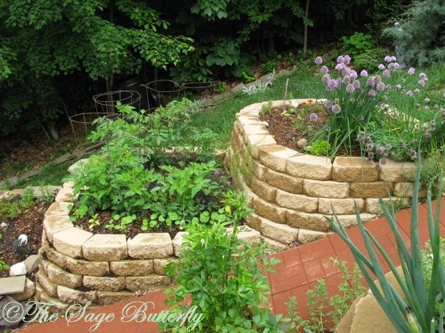 Etonnant Raised Garden Beds On A Hill | ... : How We Built Our Tiered Raised Bed  Vegetable Garden On A Slope
