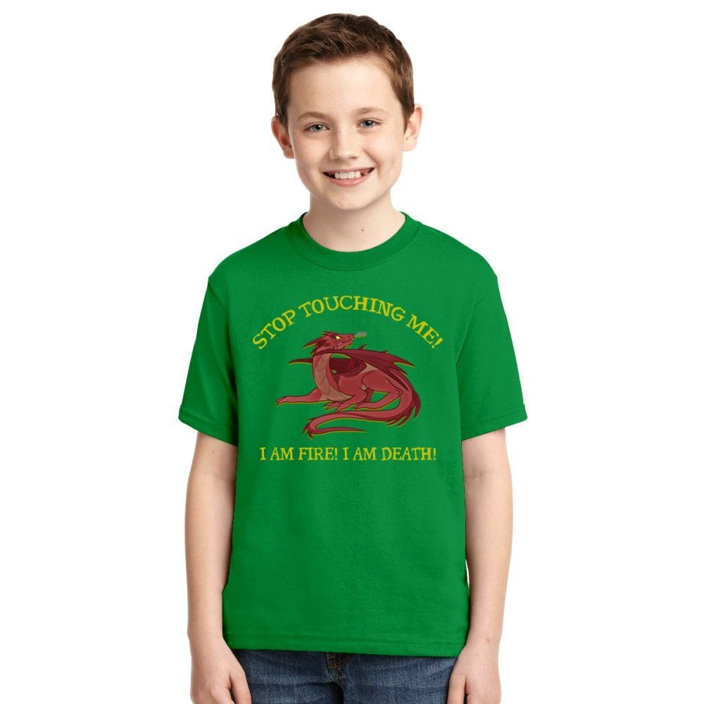 Lord Of The Rings Stop Touching Me T Shirt, Smaug The Dragon Stop Touching Me Youth T-shirt