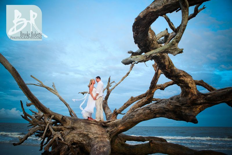 Driftwood Beach Jekyll Island Weddings And Elopements Would So Do This I Ve Been Going To Since Was 1 Yrs Old
