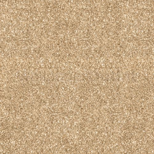 2x Grillspießgabel//Fleischklammer//Fleischnadel//Rotisserie XXL V2A poliert 20mm