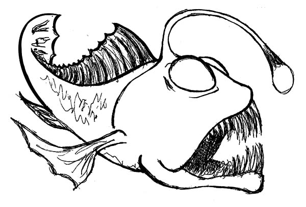 Sketch Of Angler Fish Coloring Pages Best Place To Color Fish Coloring Page Angler Fish Drawing Nemo Coloring Pages