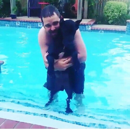 First time in the pool for Bella Rose ❤❤ My Fur Babies