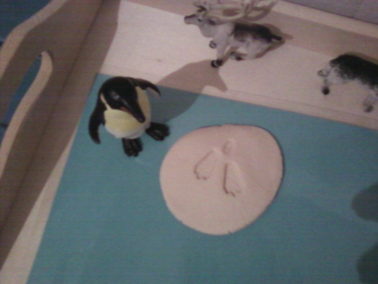 March Of The Penguins Otprints