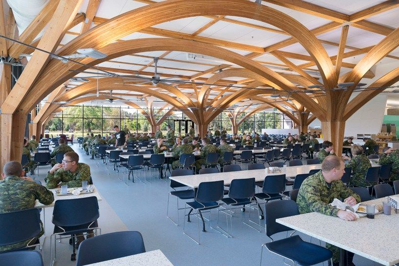 zas architects canadian military dining hall features tree