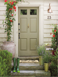 Sage Green Door Entry Light Stone Steps