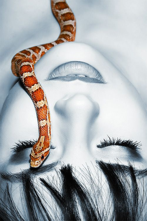 """""""The Snake and the Girl"""" by Caroline MD on Hub Pages"""