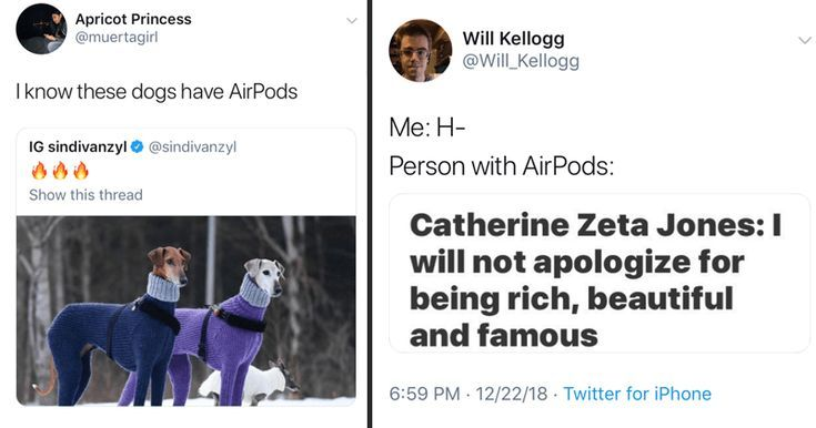 20 Airpod Memes  Tweets Thatll Make You Feel Poor