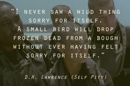 Gi Jane Movie Quote Line From Dh Lawrence Poem Bird Self Pity Cold