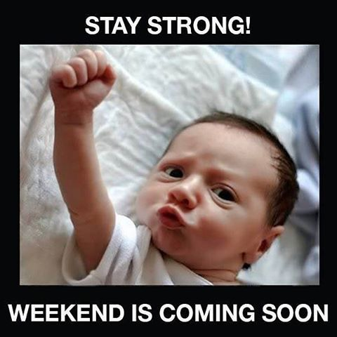 Got The Middle Of The Week Blues Happy Weekend Quotes Funny Quotes Weekend Is Coming