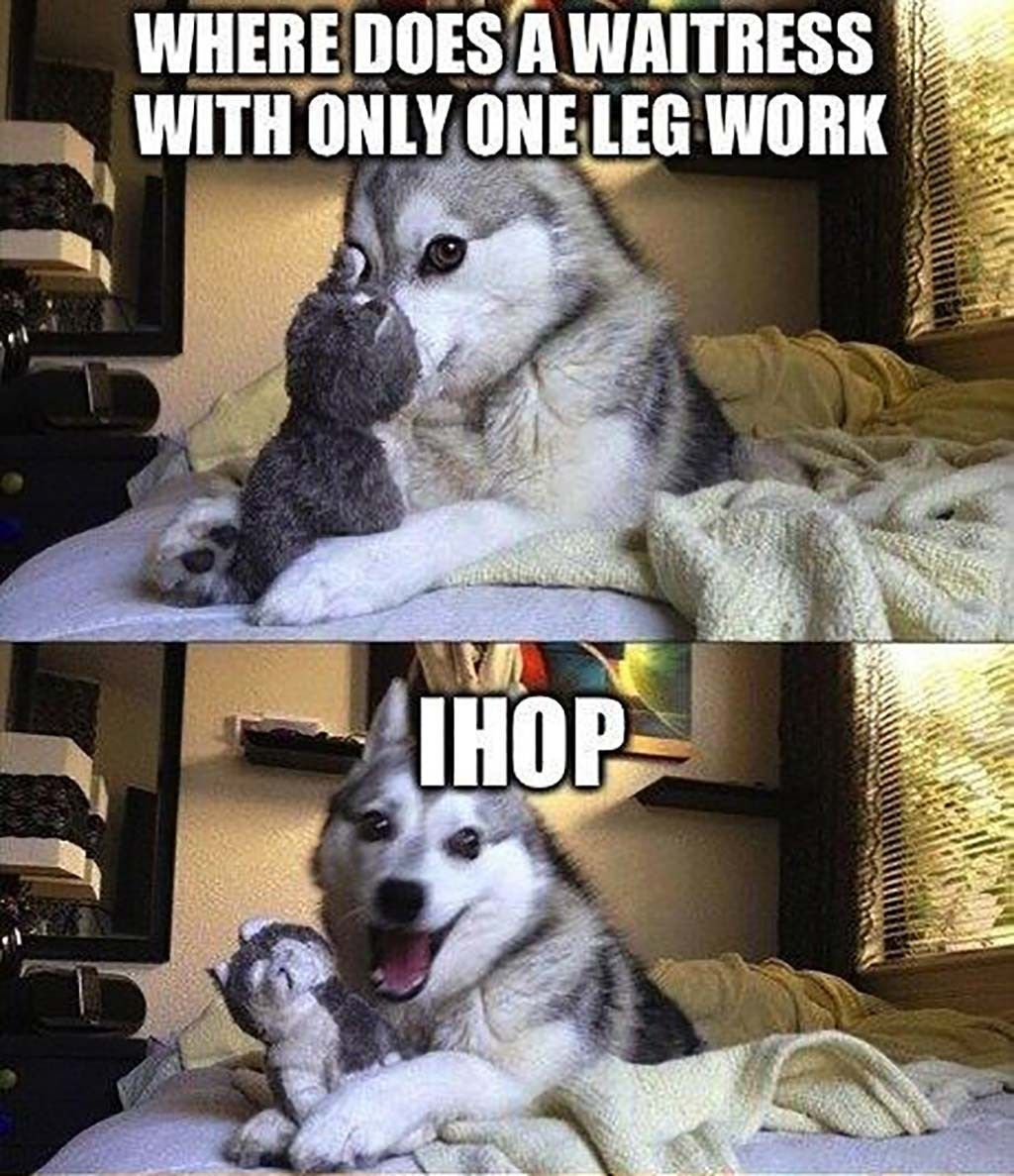 Where Does A Waitress With Only One Leg Work Funny Dog Jokes