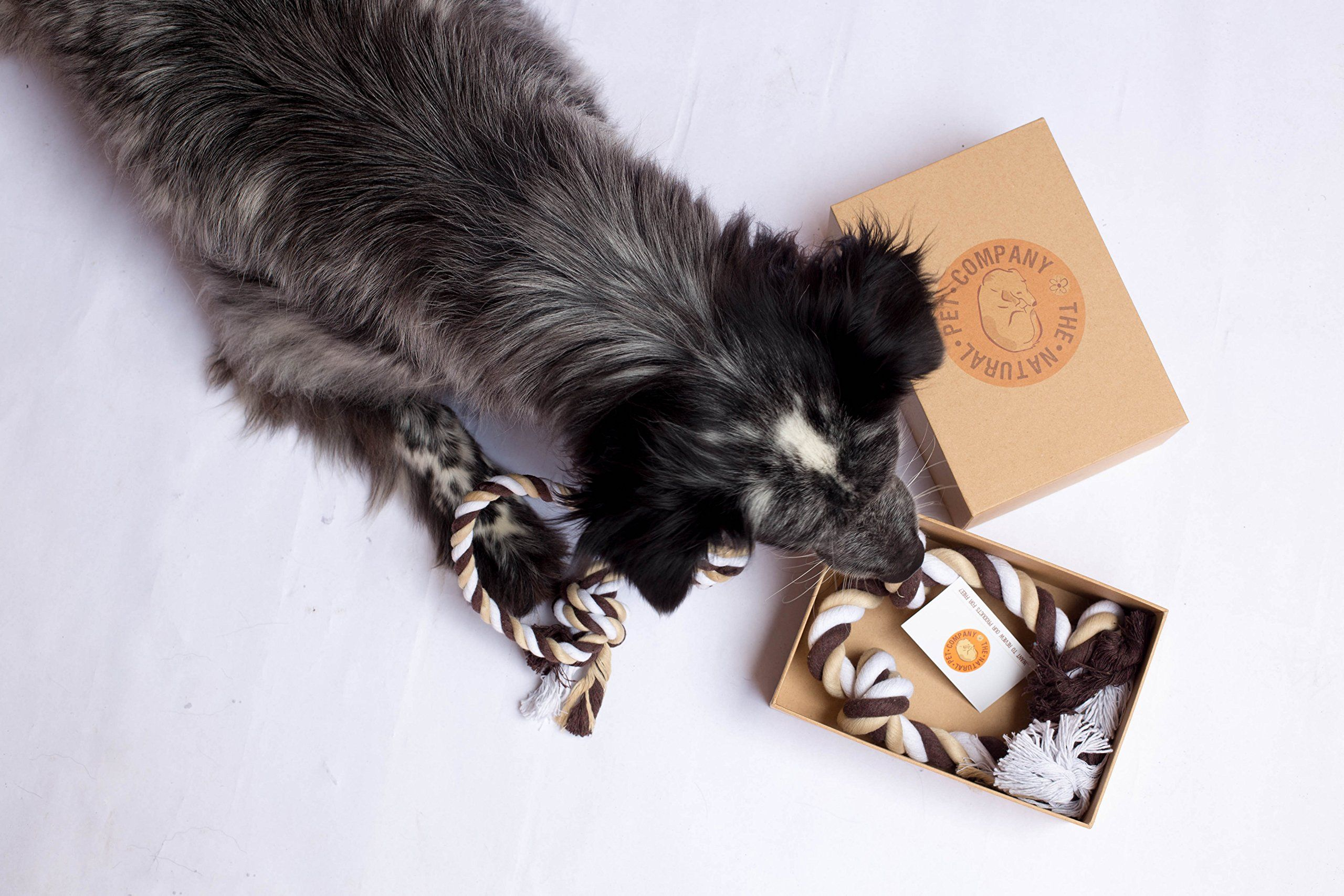 The Natural Pet Company Two Fantastic Quality Dog Toys In