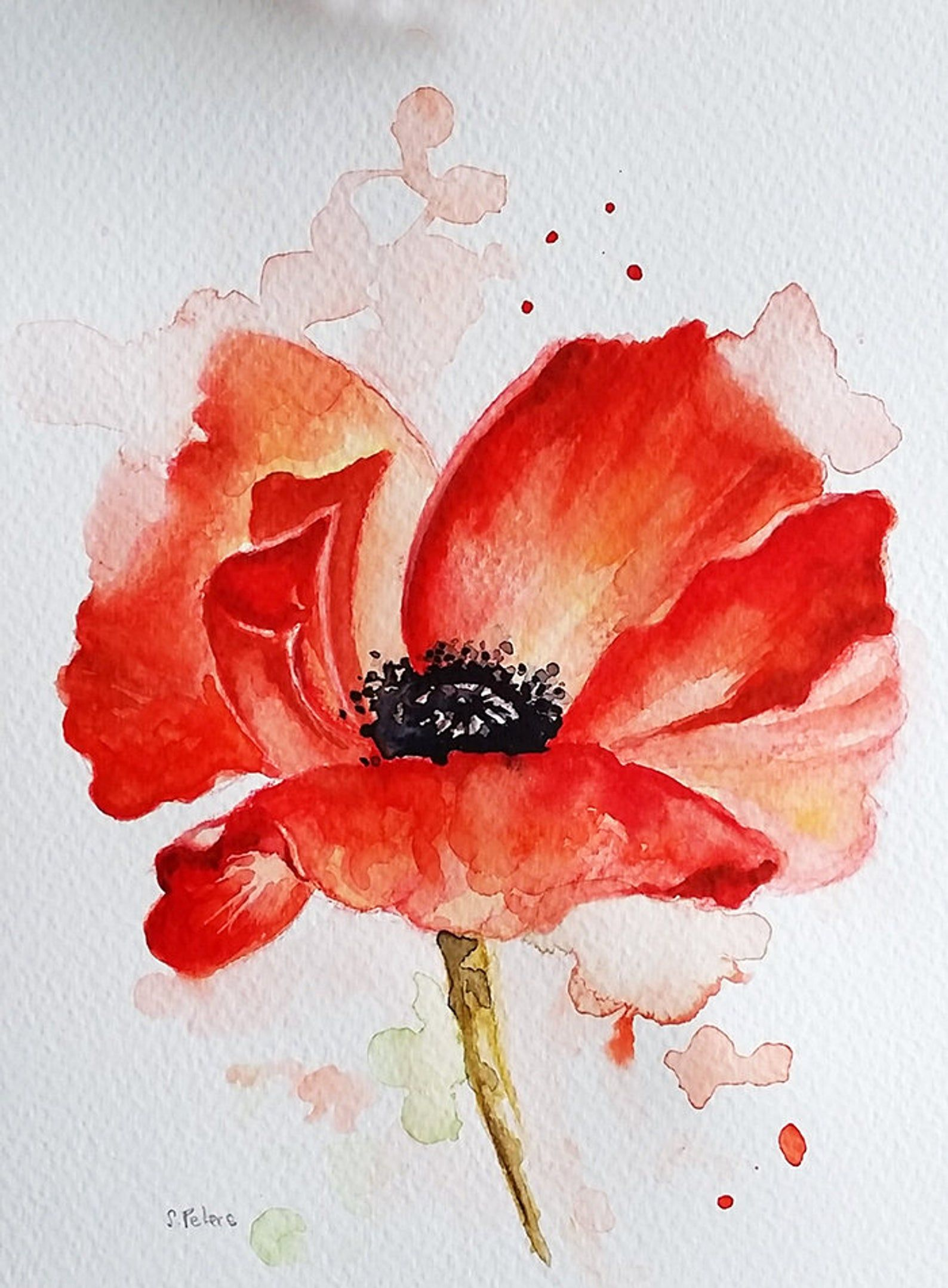 Original Watercolor Red Poppy Flower Floral Watercolor 6x8 Etsy