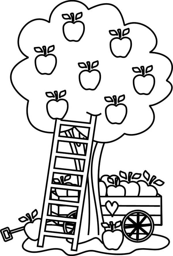 Apple Tree Carriage Under An Apple Tree Coloring Page Apple Coloring Pages Fruit Coloring Pages Fall Coloring Pages