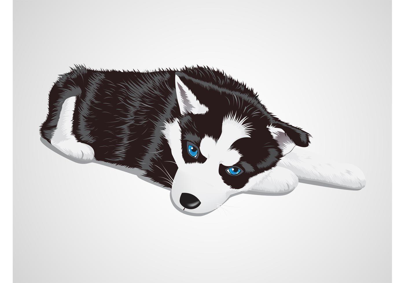 Vector graphics of a baby husky dog. Cute animal lying