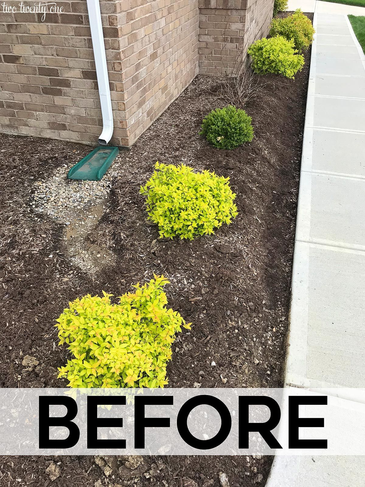 Front Yard Landscaping Refresh | DIY Your Home | Front yard