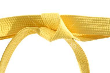 Amarillo - representa  la tierra en la que crece una planta que desarrolla sus raices, como los fundamentos del TWD