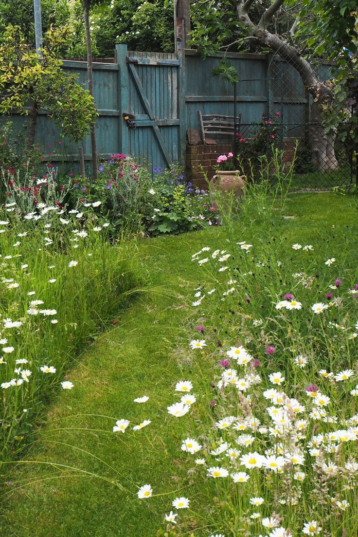 Photo of How to create a beautiful mini meadow garden # create a #MiniWiesenga …