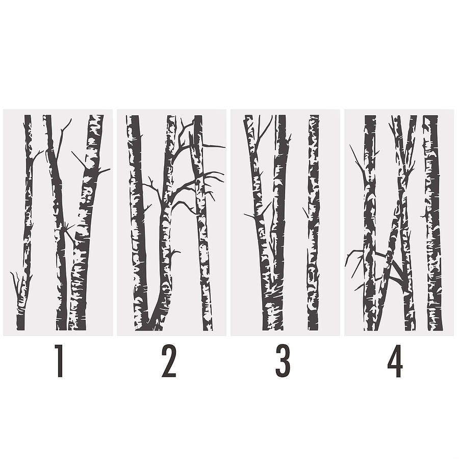 Silver Birch Trees Vinyl Wall Sticker Vinyl Wall Stickers Wall - Vinyl wall decals birch tree