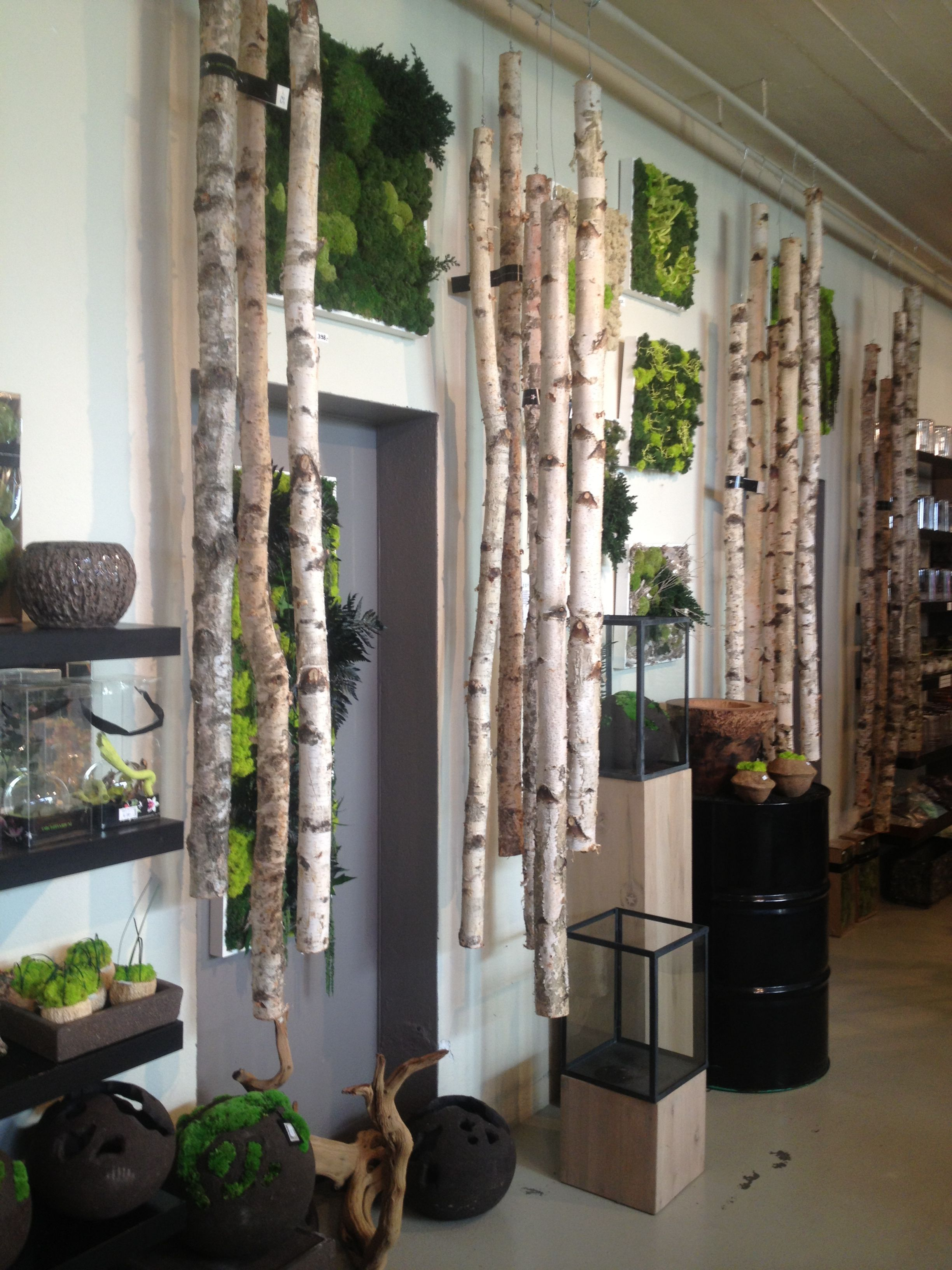 Beautiful Wall Decoration Room Separation With Framed Moss And Birch