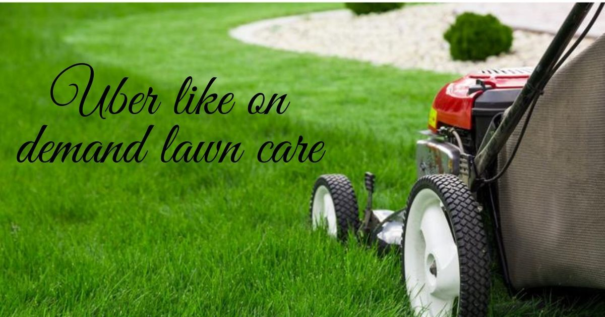 At Solutions, creating a Uber for lawn mowing